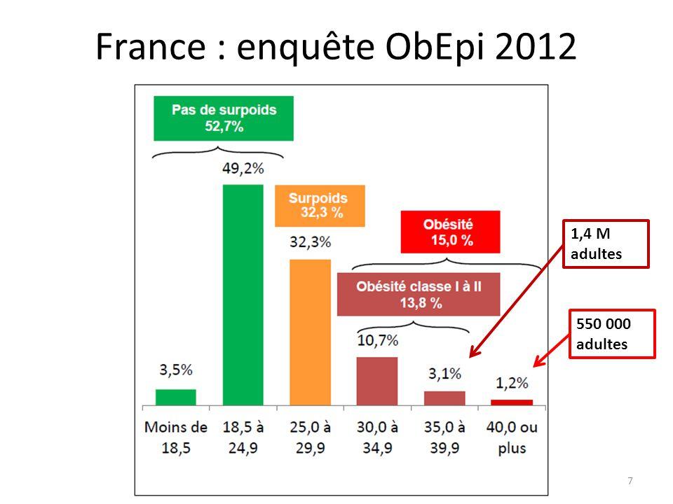 DU Obésité 2014 - G Mercier8