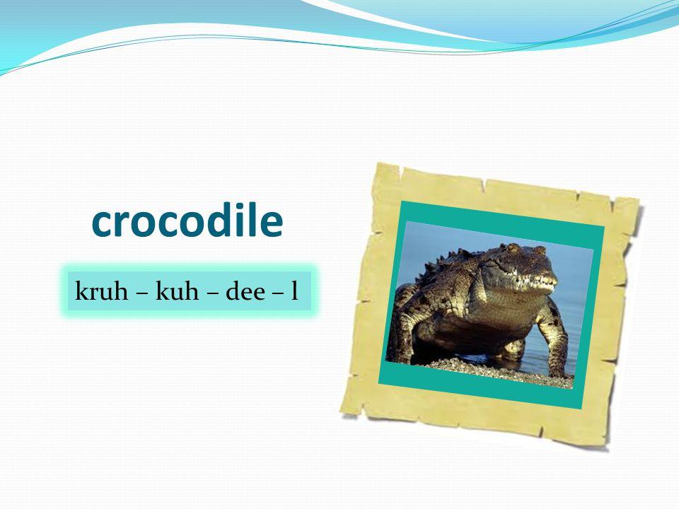 crocodile kruh – kuh – dee – l