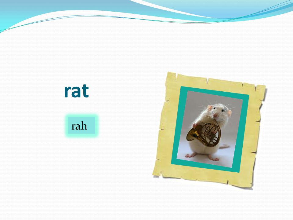 rat rah