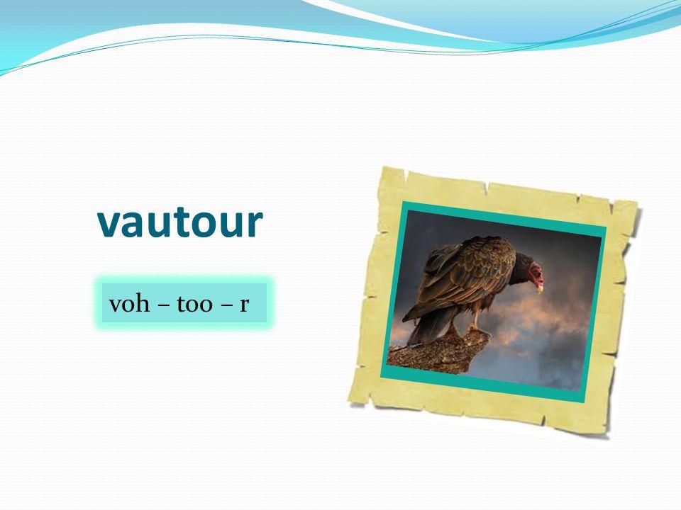 vautour voh – too – r