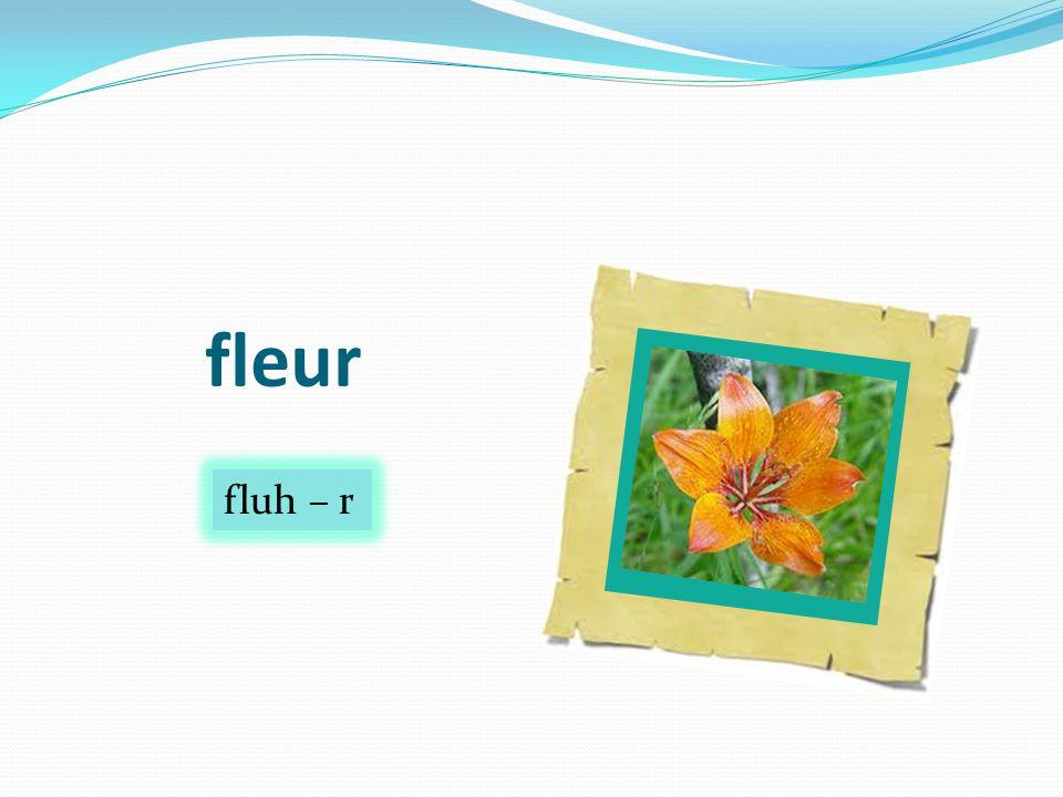 fleur fluh – r