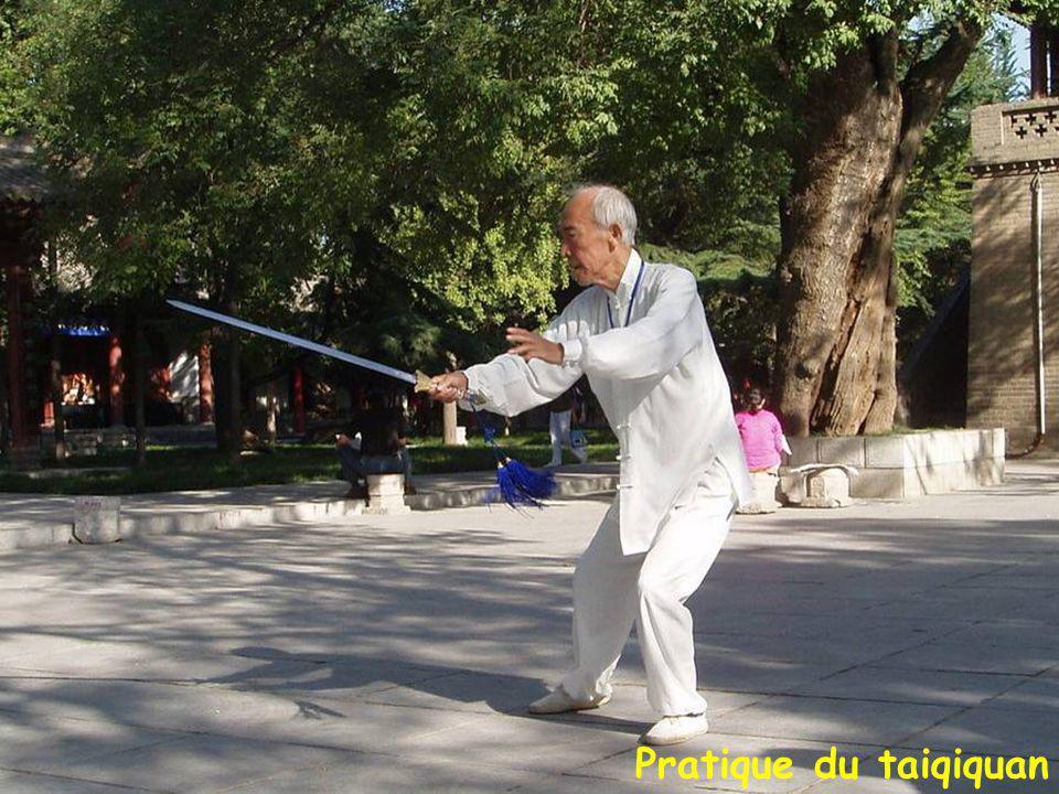 Xi'an: Petite Pagode de l'Oie Sauvage (707-709).