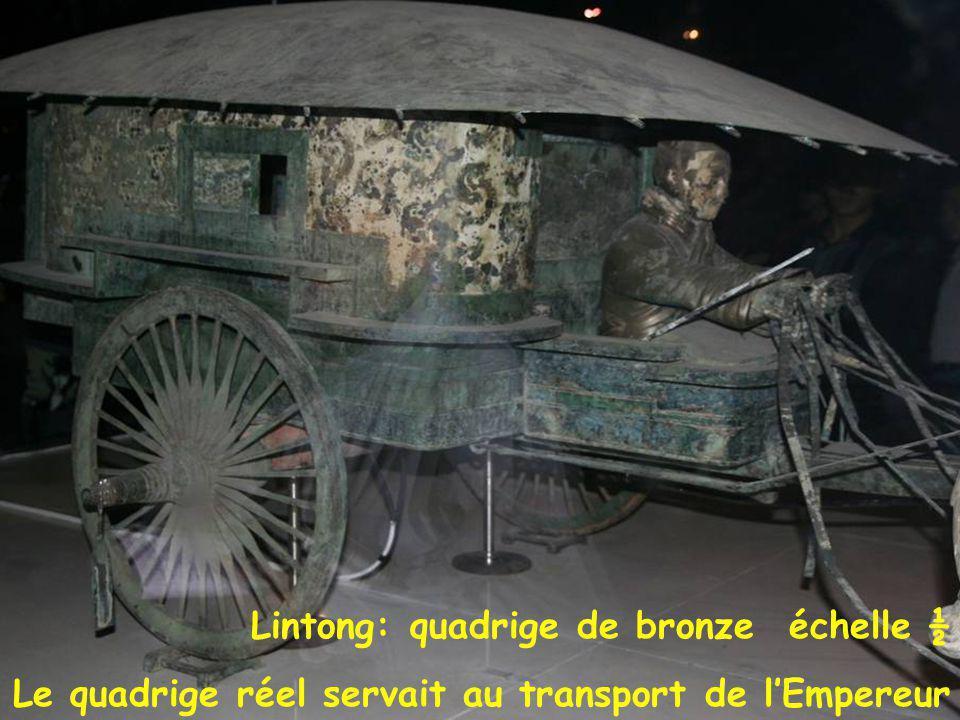 Quadrige bronze Lintong: quadrige de bronze échelle ½ Le quadrige réel servait au transport de l'Empereur