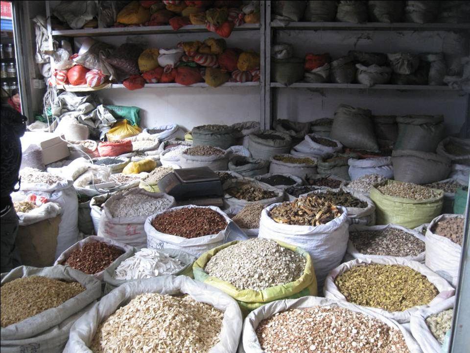 Visite du marché des pharmacies chinoises