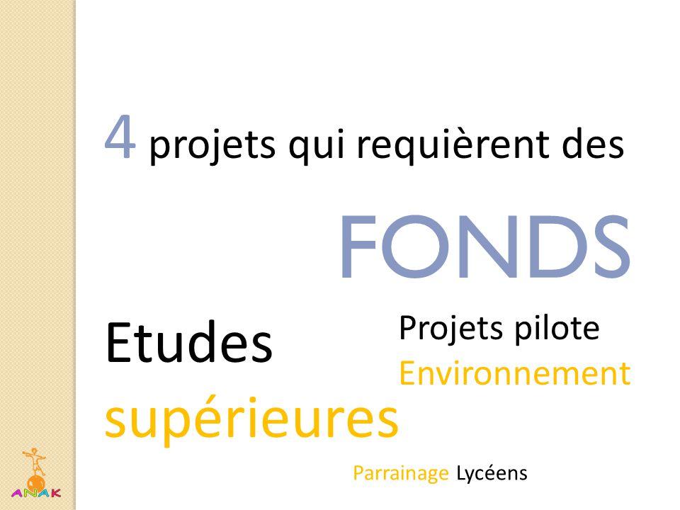 4 projets qui requièrent des FONDS Etudes supérieures Parrainage Lycéens Projets pilote Environnement