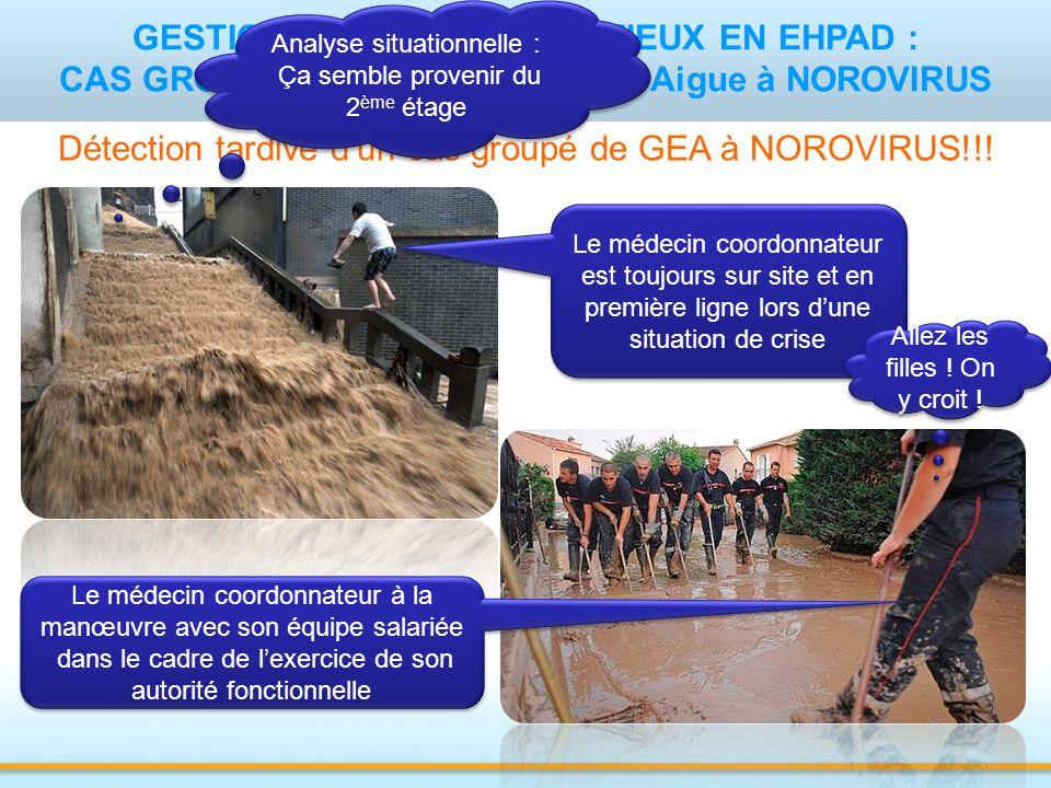 GESTION DE RISQUE INFECTIEUX EN EHPAD : CAS GROUPES DE Gastro-Entérite Aigue à NOROVIRUS Détection tardive d'un cas groupé de GEA à NOROVIRUS!!.