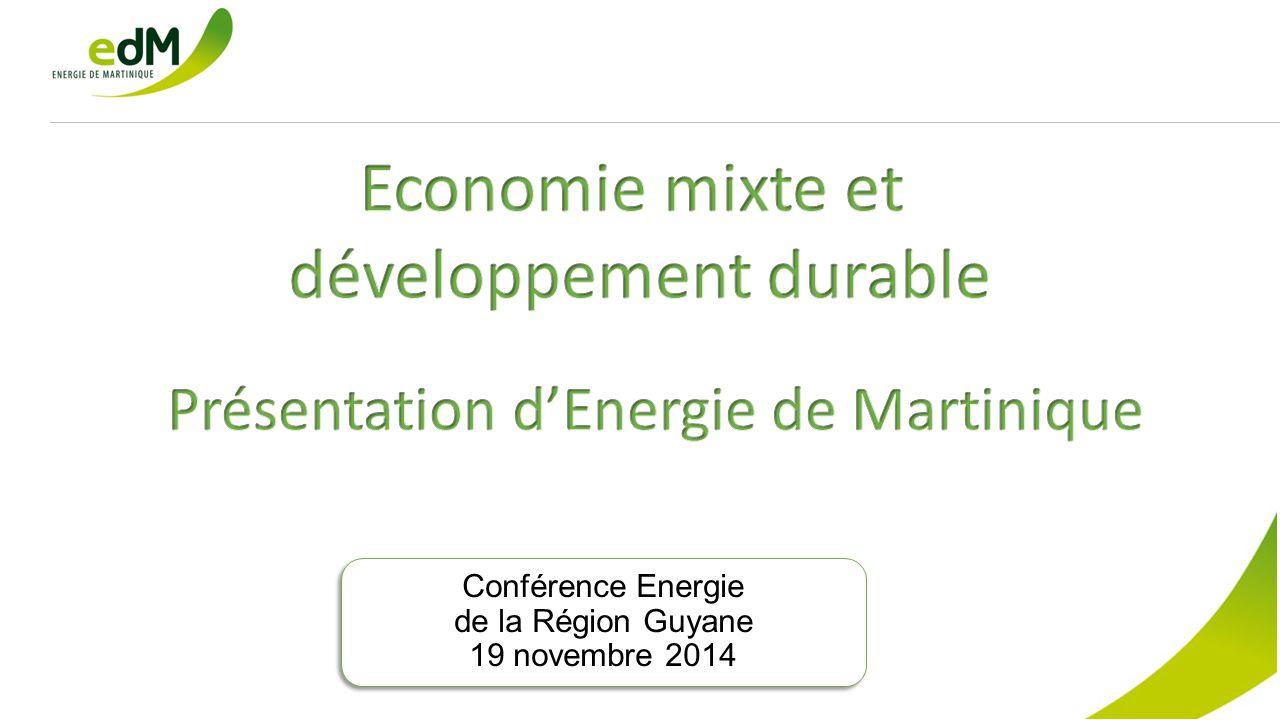 Conférence Energie de la Région Guyane 19 novembre 2014 Conférence Energie de la Région Guyane 19 novembre 2014