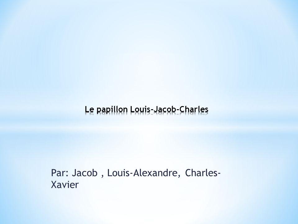 Par: Jacob, Louis-Alexandre, Charles- Xavier