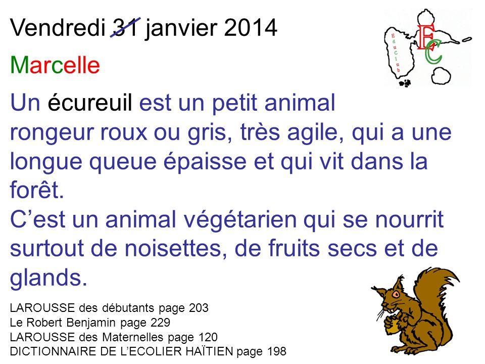 Vendredi 31 janvier 2014 Marcelle Un écureuil est un petit animal rongeur roux ou gris, très agile, qui a une longue queue épaisse et qui vit dans la forêt.