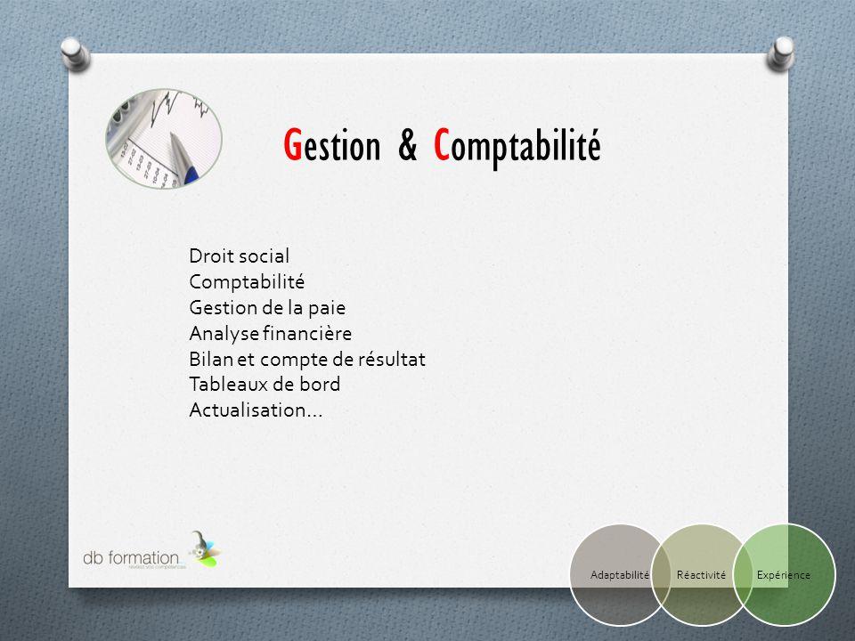 Droit social Comptabilité Gestion de la paie Analyse financière Bilan et compte de résultat Tableaux de bord Actualisation… Gestion & Comptabilité