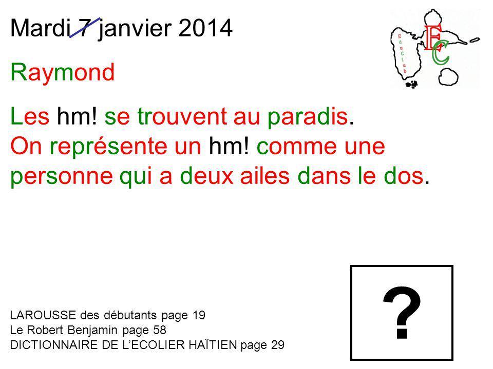Mardi 7 janvier 2014 Raymond Les hm! se trouvent au paradis. On représente un hm! comme une personne qui a deux ailes dans le dos. LAROUSSE des débuta