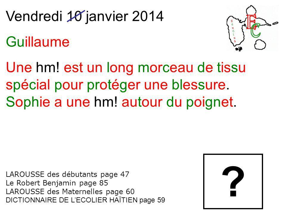 Vendredi 10 janvier 2014 Guillaume Une hm! est un long morceau de tissu spécial pour protéger une blessure. Sophie a une hm! autour du poignet. LAROUS