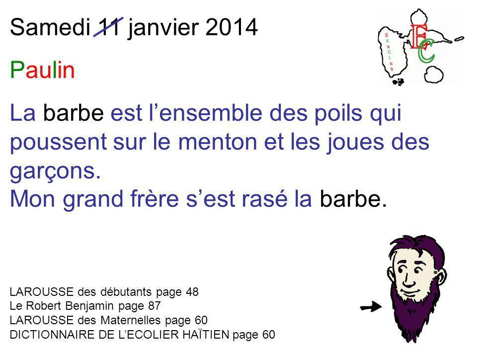 Samedi 11 janvier 2014 Paulin La barbe est l'ensemble des poils qui poussent sur le menton et les joues des garçons.