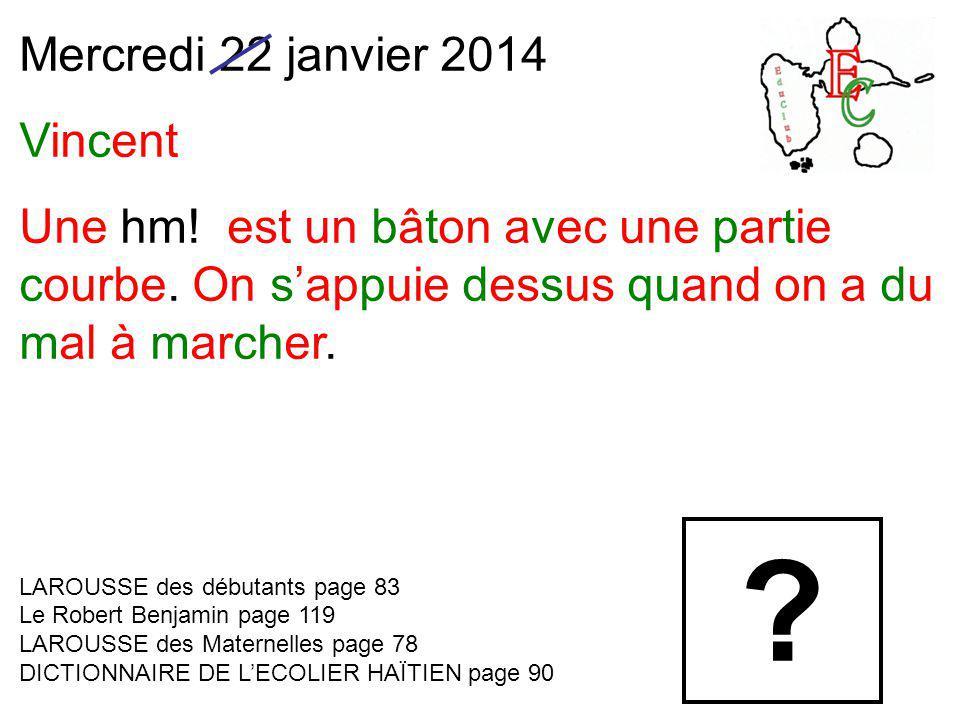 Mercredi 22 janvier 2014 Vincent Une hm. est un bâton avec une partie courbe.