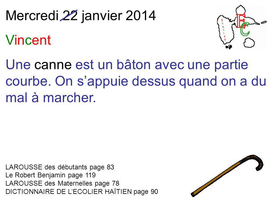 Mercredi 22 janvier 2014 Vincent Une canne est un bâton avec une partie courbe.