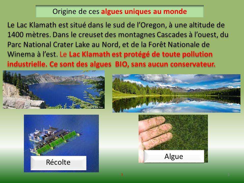 Vidéo conférence Jacques Prunier : 44