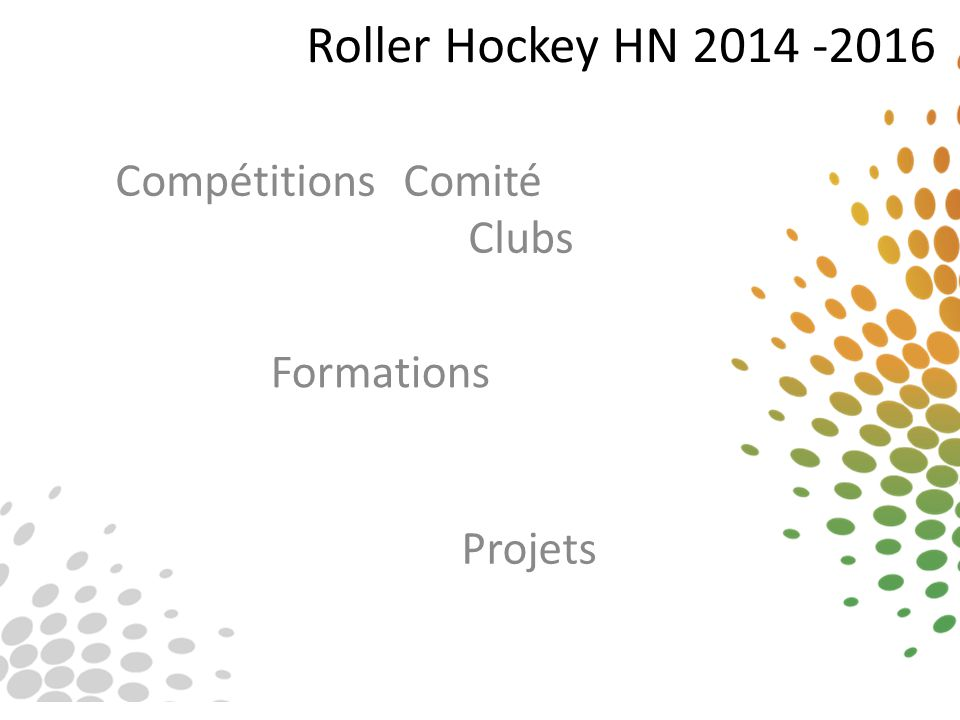 Roller Hockey HN 2014 -2016 Compétitions Comité Clubs Projets Formations