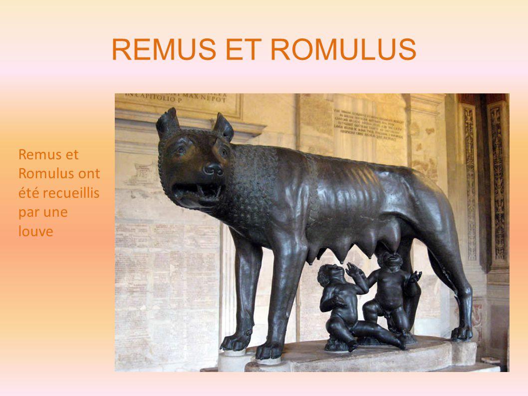 REMUS ET ROMULUS Remus et Romulus ont été recueillis par une louve