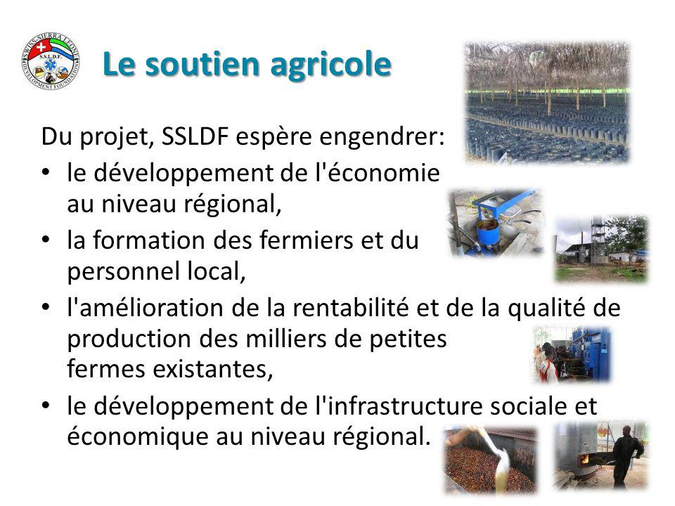 Le soutien agricole Du projet, SSLDF espère engendrer: le développement de l économie au niveau régional, la formation des fermiers et du personnel local, l amélioration de la rentabilité et de la qualité de production des milliers de petites fermes existantes, le développement de l infrastructure sociale et économique au niveau régional.