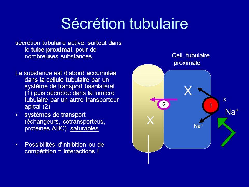 Sécrétion tubulaire sécrétion tubulaire active, surtout dans le tube proximal, pour de nombreuses substances.
