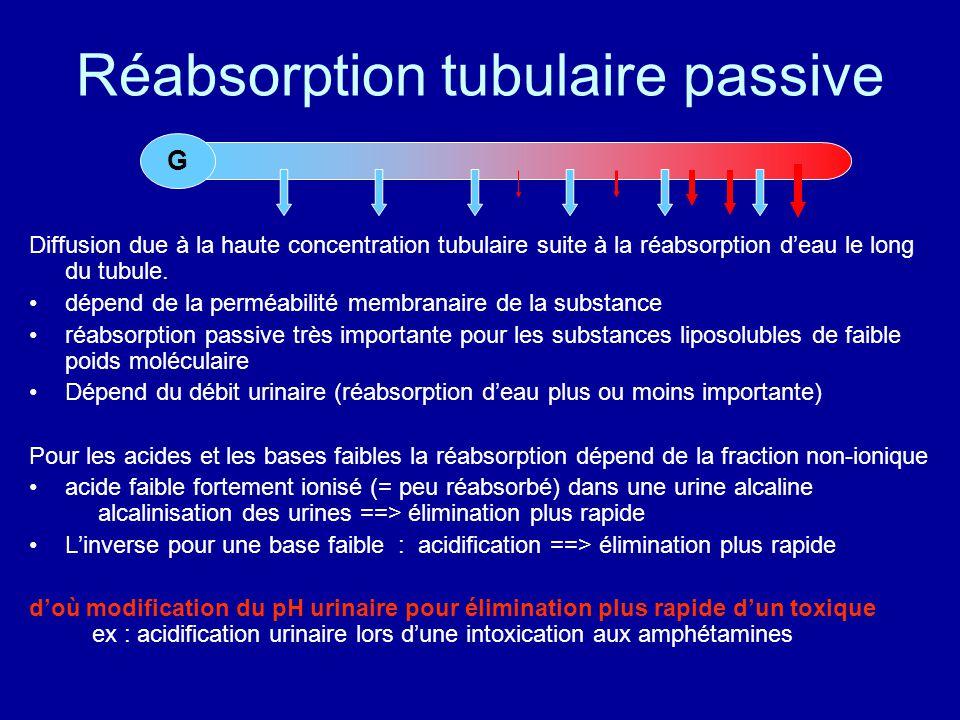 Réabsorption tubulaire passive Diffusion due à la haute concentration tubulaire suite à la réabsorption d'eau le long du tubule.