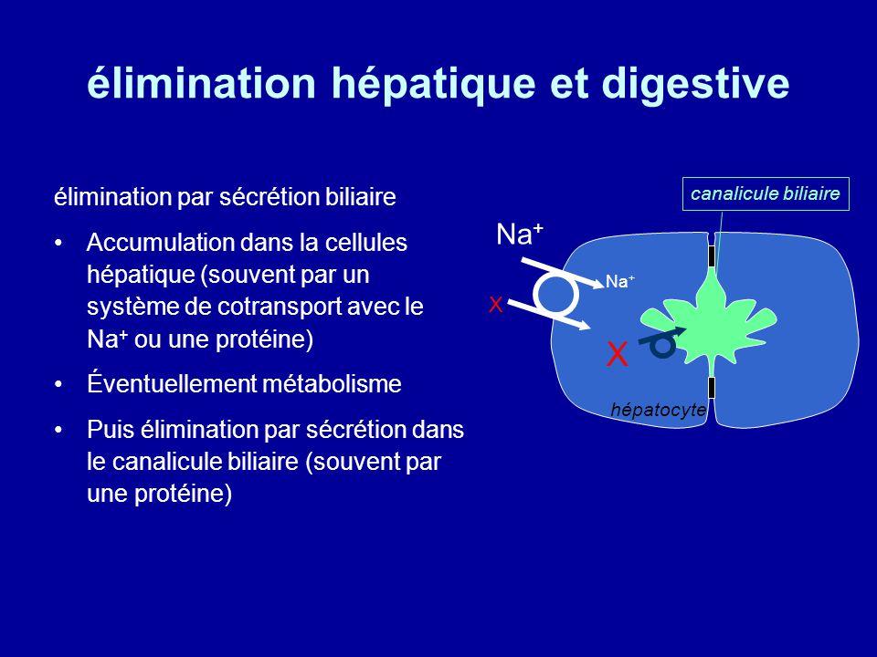élimination hépatique et digestive élimination par sécrétion biliaire Accumulation dans la cellules hépatique (souvent par un système de cotransport avec le Na + ou une protéine) Éventuellement métabolisme Puis élimination par sécrétion dans le canalicule biliaire (souvent par une protéine) X X Na + hépatocyte canalicule biliaire