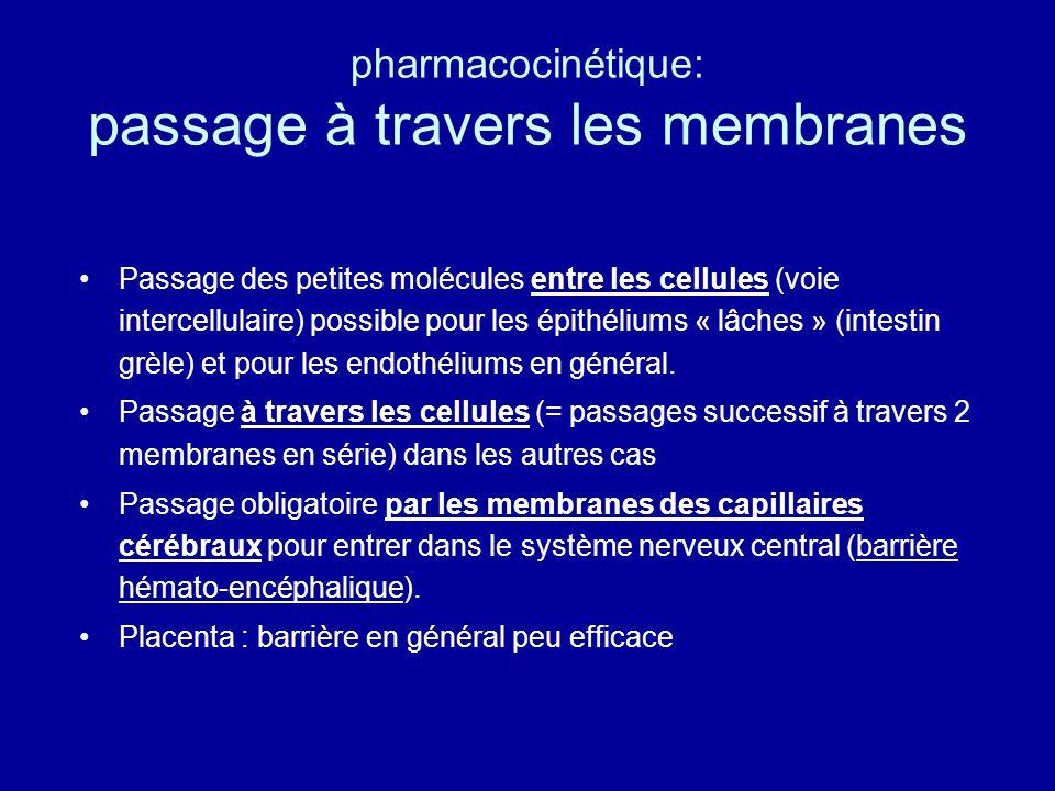 pharmacocinétique: passage à travers les membranes Passage des petites molécules entre les cellules (voie intercellulaire) possible pour les épithéliums « lâches » (intestin grèle) et pour les endothéliums en général.