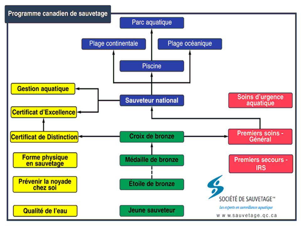 Sauveteur National Équipement(s) et matériel Pour le moniteur : Pour le moniteur : Brique de récupération 10 kg (20 livres) Brique de récupération 10 kg (20 livres) Équipements de sauvetage appropriés (selon S3-r.3 et matériel de l'installation) Équipements de sauvetage appropriés (selon S3-r.3 et matériel de l'installation) Mannequins ACTAR (recommandé) Mannequins ACTAR (recommandé) Pour les candidats : Masque de poche Gants Sifflet
