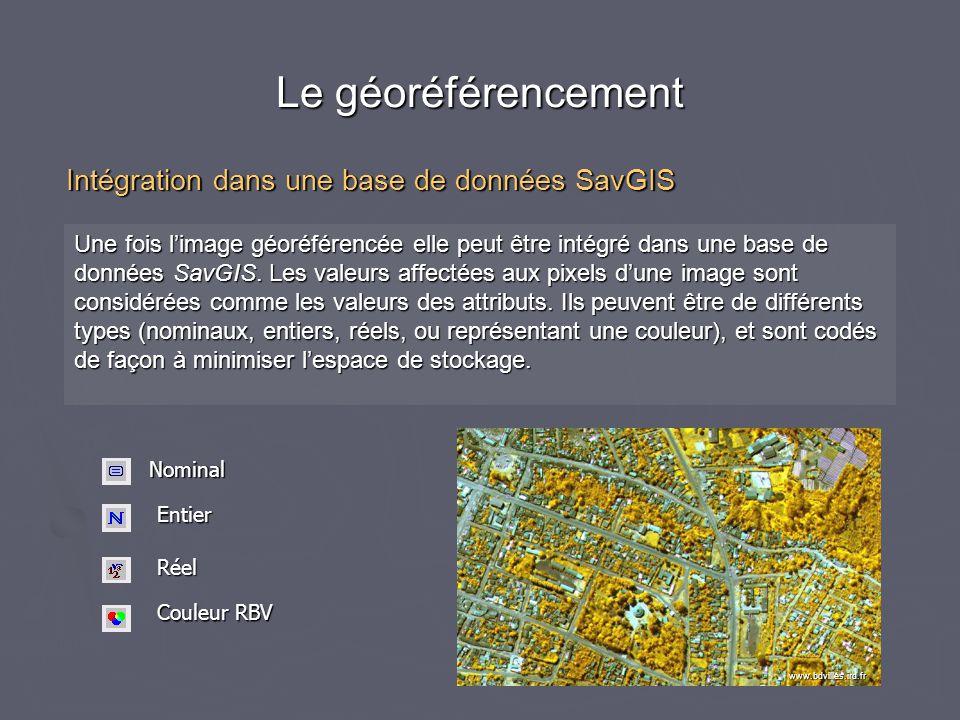Le géoréférencement Une fois l'image géoréférencée elle peut être intégré dans une base de données SavGIS. Les valeurs affectées aux pixels d'une imag