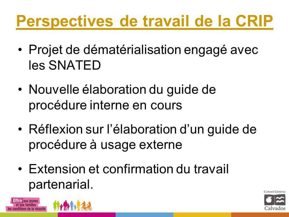 Perspectives de travail de la CRIP Projet de dématérialisation engagé avec les SNATED Nouvelle élaboration du guide de procédure interne en cours Réfl