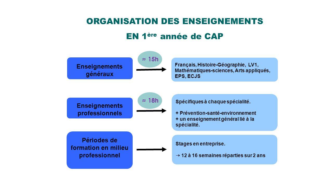 ORGANISATION DES ENSEIGNEMENTS EN 1 ère année de CAP Enseignements généraux Français, Histoire-Géographie, LV1, Mathématiques-sciences, Arts appliqués