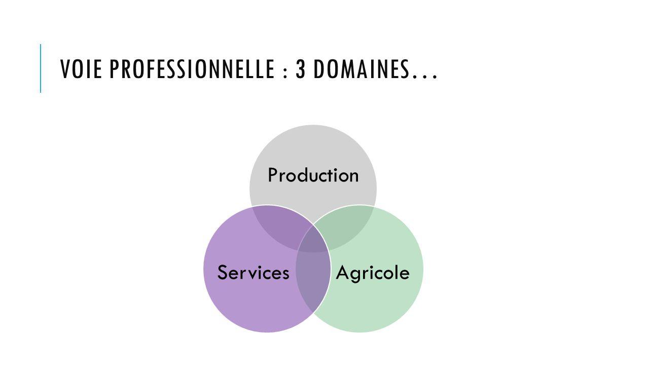 VOIE PROFESSIONNELLE : 3 DOMAINES… Production AgricoleServices