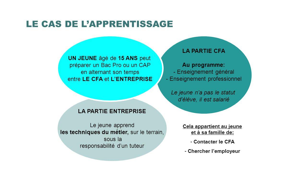 LE CAS DE L'APPRENTISSAGE LA PARTIE CFA Au programme: - Enseignement général - Enseignement professionnel Le jeune n'a pas le statut d'élève, il est s