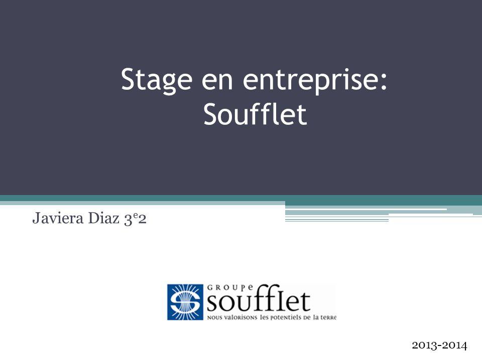 Stage en entreprise: Soufflet Javiera Diaz 3 e 2 2013-2014