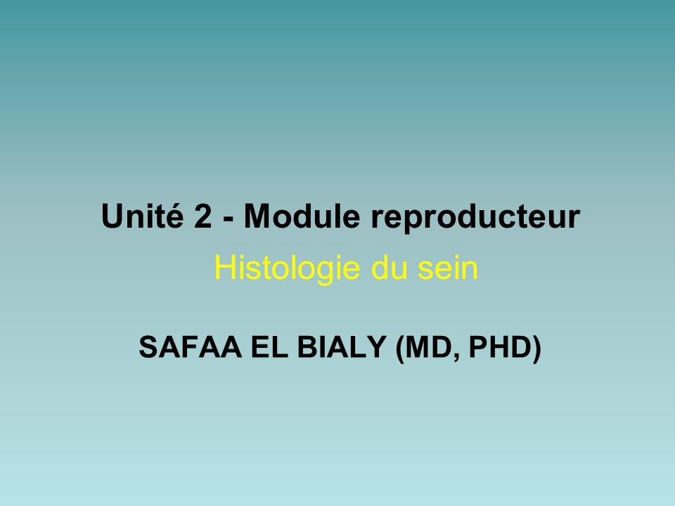SAFAA EL BIALY (MD, PHD) Unité 2 - Module reproducteur Histologie du sein