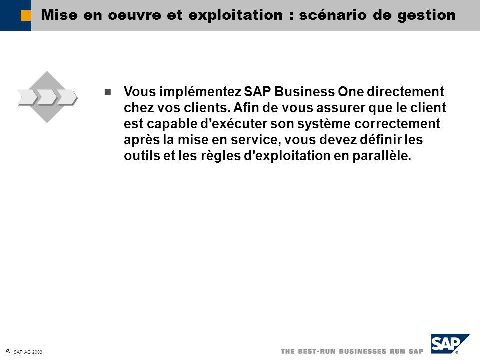  SAP AG 2003 Vous implémentez SAP Business One directement chez vos clients. Afin de vous assurer que le client est capable d'exécuter son système co