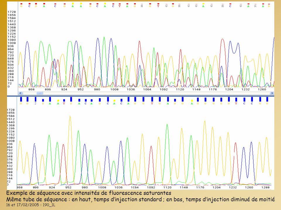 Exemple de séquence avec intensités de fluorescence saturantes Même tube de séquence : en haut, temps d'injection standard ; en bas, temps d'injection