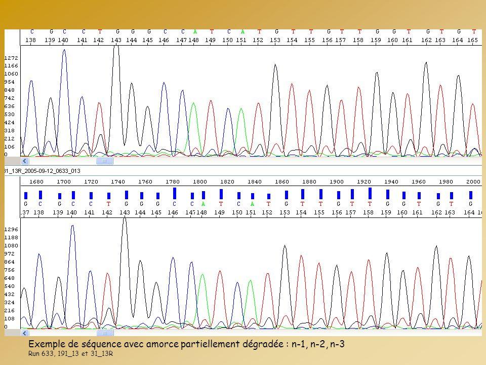 Exemple de séquence avec amorce partiellement dégradée : n-1, n-2, n-3 Run 633, 191_13 et 31_13R