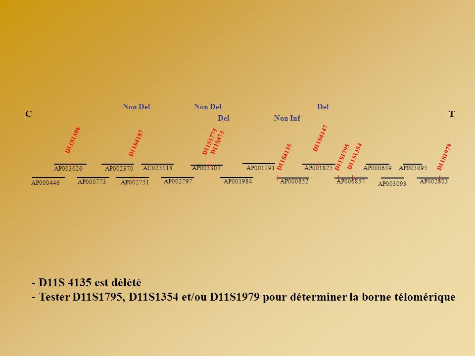 D11S4135 D11S4147 D11S1354 D11S1795 AP001791 AP001984 AP003305 AP002797 AC023118 AP002751 AP002370 AP000773 AP003026 AP000446 D11S873 D11S1775 D11S418