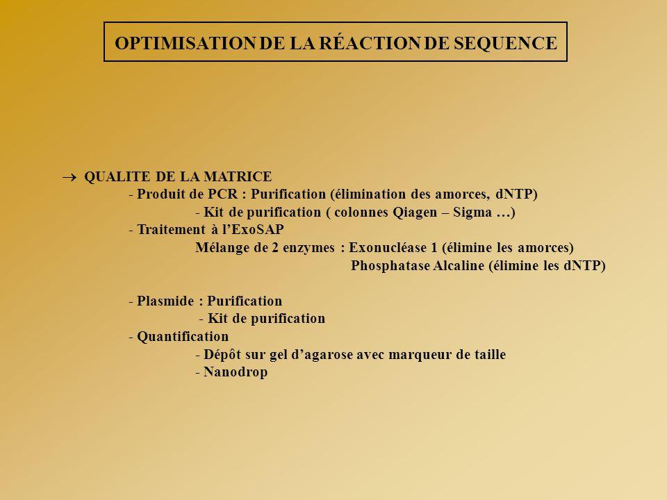 OPTIMISATION DE LA RÉACTION DE SEQUENCE  QUALITE DE LA MATRICE - Produit de PCR : Purification (élimination des amorces, dNTP) - Kit de purification
