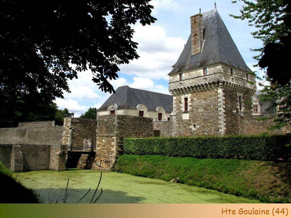 Fort St-André (84)