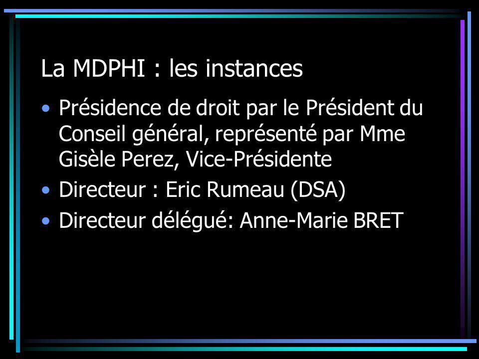 La MDPHI : les instances Présidence de droit par le Président du Conseil général, représenté par Mme Gisèle Perez, Vice-Présidente Directeur : Eric Ru