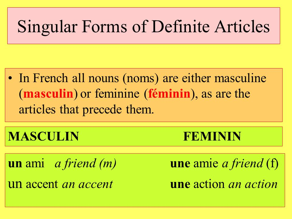 Singular Forms of Definite Articles In French all nouns (noms) are either masculine (masculin) or feminine (féminin), as are the articles that precede