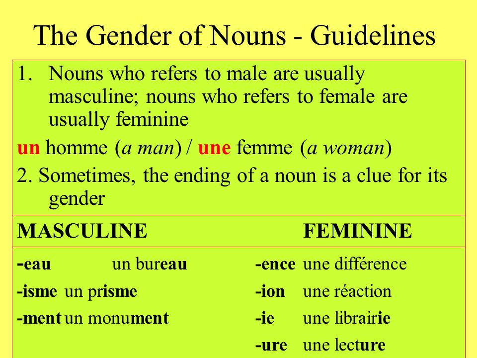 The Gender of Nouns - Guidelines Nouns borrowed from other languages are usually masculine –Un coca-cola –Un couscous –Un baklava The name of languages are masculine –Elle parle un français impeccable
