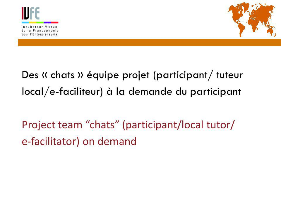 Des « chats » équipe projet (participant/ tuteur local/e-faciliteur) à la demande du participant Project team chats (participant/local tutor/ e-facilitator) on demand Gérard Lemoine, IVFE (AUF), île Maurice 40
