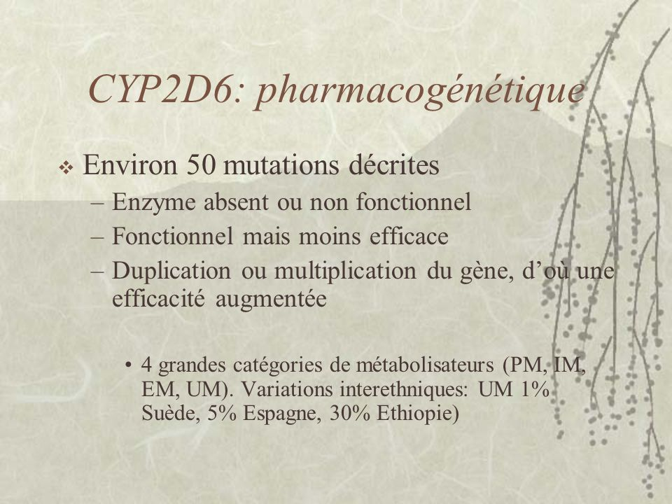 CYP2D6: pharmacogénétique  Environ 50 mutations décrites –Enzyme absent ou non fonctionnel –Fonctionnel mais moins efficace –Duplication ou multiplication du gène, d'où une efficacité augmentée 4 grandes catégories de métabolisateurs (PM, IM, EM, UM).