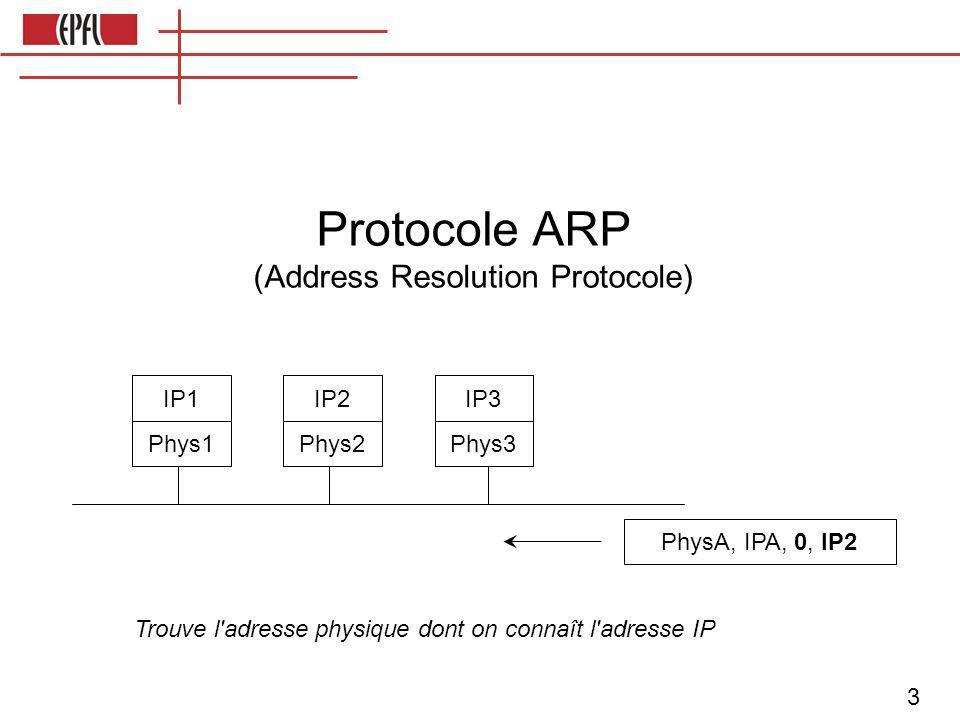 4 En-tête niveau physique En-tête IP Données de la couche supérieure Structure de chaque message envoyé sur Internet