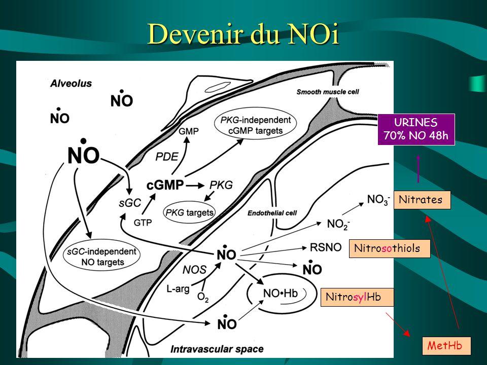 NitrosylHb Nitrosothiols Devenir du NOi MetHb Nitrates URINES 70% NO 48h