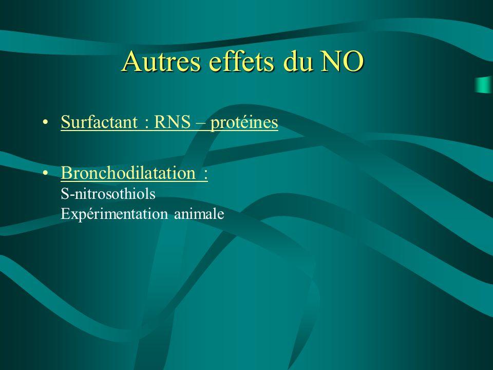 Autres effets du NO Surfactant : RNS – protéines Bronchodilatation : S-nitrosothiols Expérimentation animale