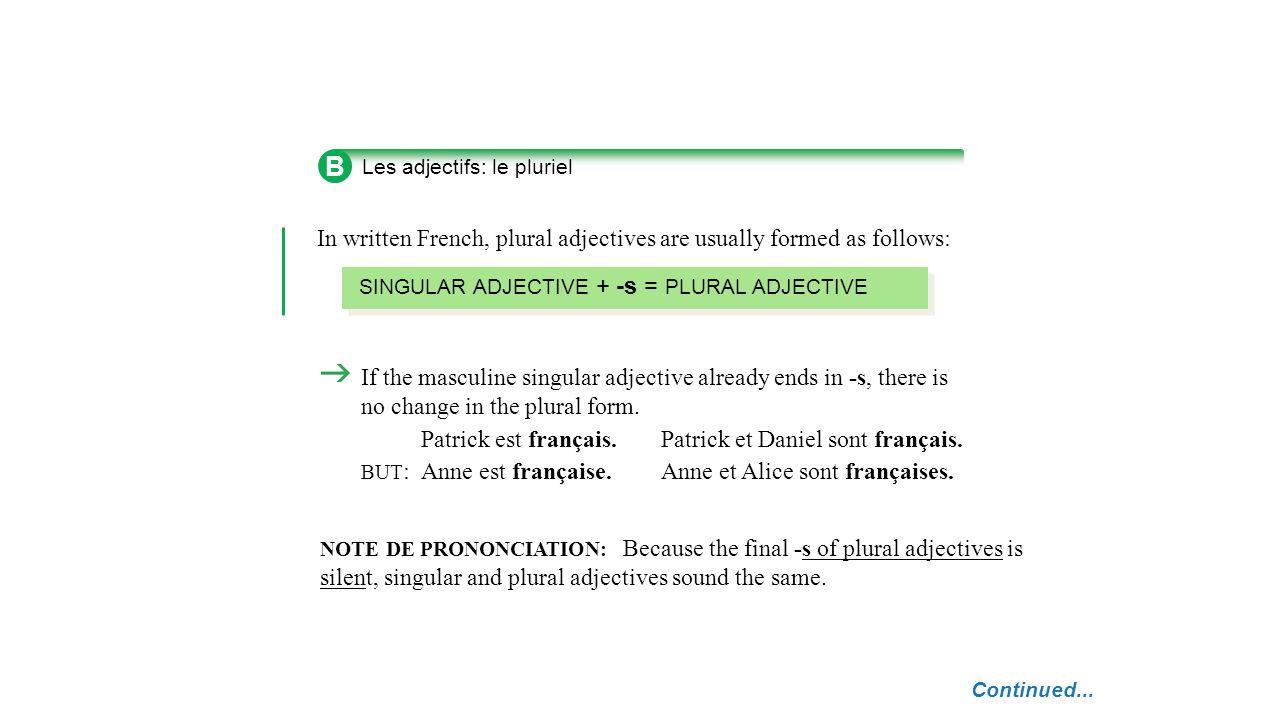 C Les adjectifs: formes et position POSITION Most adjectives come AFTER the noun they modify.